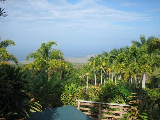 Aloha Guest House: view from the top of hill toward ocean