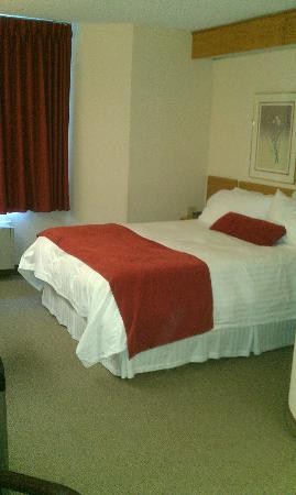 Slumber Inn: Bed