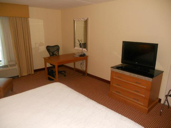 Hilton Garden Inn Atlanta Airport/Millenium Center: TV and work area in room