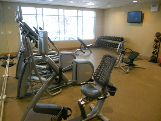 Hilton Garden Inn Atlanta Airport/Millenium Center: Fitness center