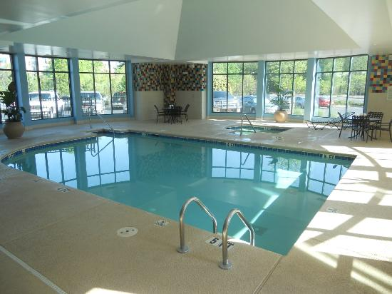 Hilton Garden Inn Atlanta Airport/Millenium Center: Pool