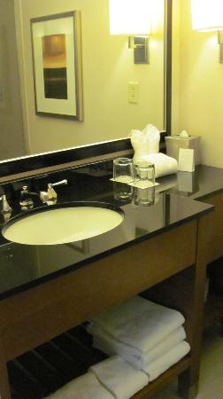 Hyatt Regency Crystal City at Reagan National Airport: Bathroom