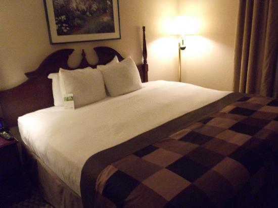 Wingate by Wyndham Atlanta Norcross: I'm back and this is a very comfortable bed.  I can't wait to get in it!