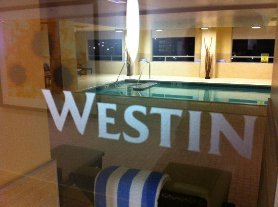 The Westin Washington Dulles Airport: Indoor Pool on Second Floor