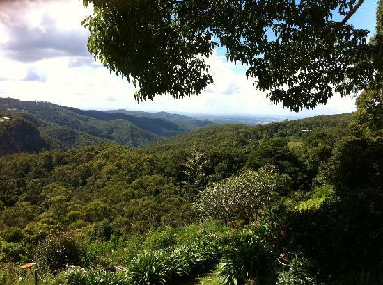 Tamborine Mountain Tours: View from St. Bernards (lunch recommended)