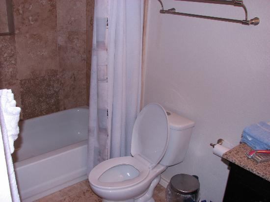 Seascape Condominium Rentals: toilet and shower unit 2222