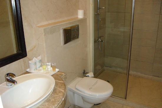 Parkland Safdarjung Enclave: Вид ванной комнаты