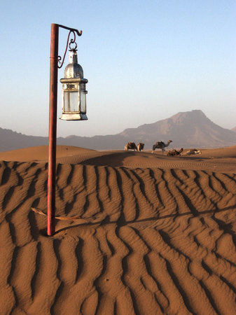 Amira Tourisme