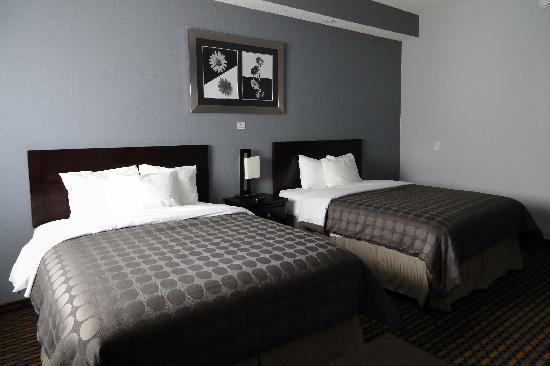 Days Inn & Suites Bonita Springs North Naples: chambre