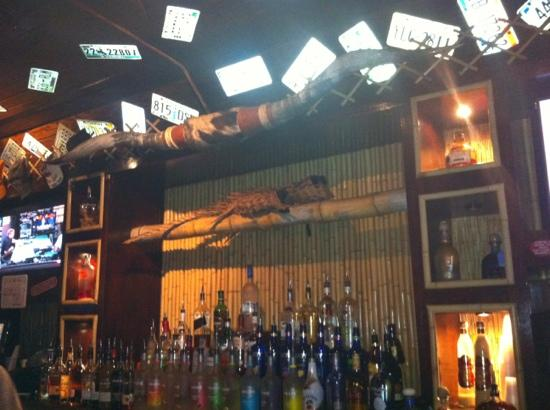 Iguana Grill: bar view