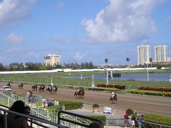 Gulfstream Park : race day