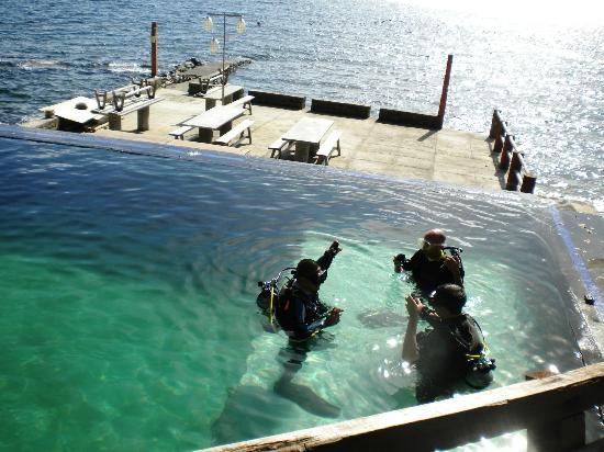 Portulano Dive Resort: The training pool