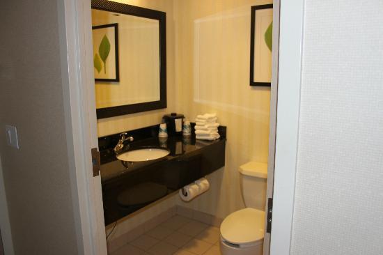 Fairfield Inn Rochester South : Bathroom