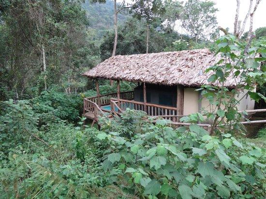 The Buhoma Community Rest Camp: Jungle 'resort'