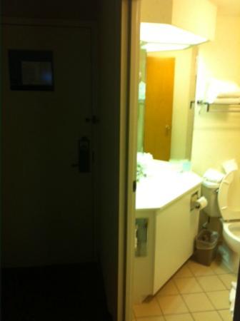 East Syracuse Inn: Miniscule bathroom