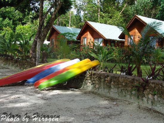 Dolphin Bay Resort & Peleliu Divers: Bungalows