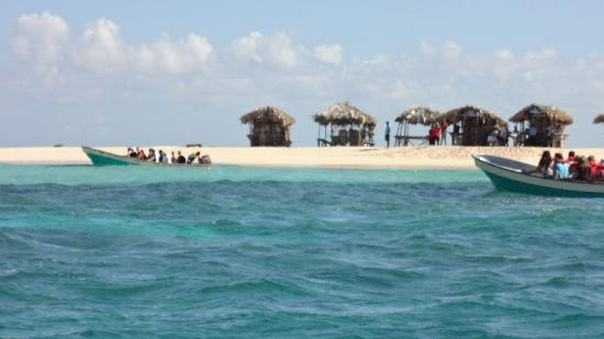 Paradise Island & The Mangroves (Cayo Arena): aproach by speed boat