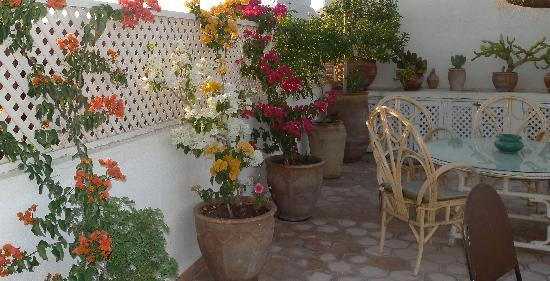 Riad Le Coq Berbere: Terrazza
