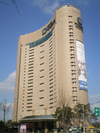 BEST WESTERN Niagara Hotel: BW Niagara