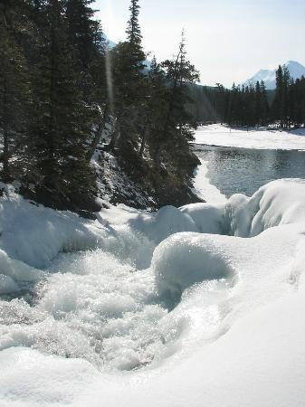 Bow Falls: Still frozen