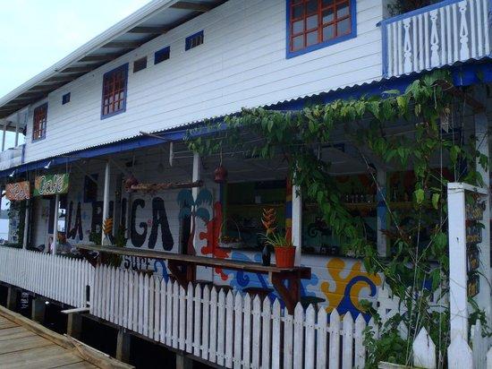 La Buga Dive Center & Surf School : Welcome to La Buga