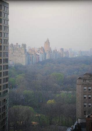 Wellington Hotel New York Tripadvisor