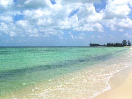 Isla Pasión: The beach