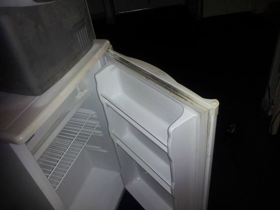 White House Inn on The Bay: Fridge with mold