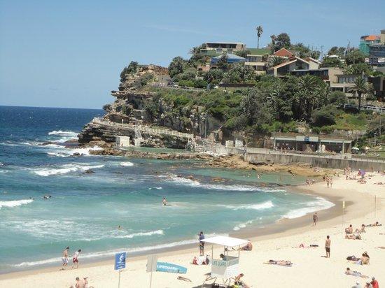 Bondi to Coogee Beach Coastal Walk : Bondi coastal walk