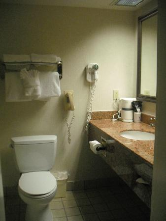 Best Western Plus Atlantic City West Extended Stay & Suites: Bathroom