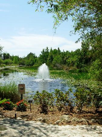 Largo, FL: Fountains and Ponds