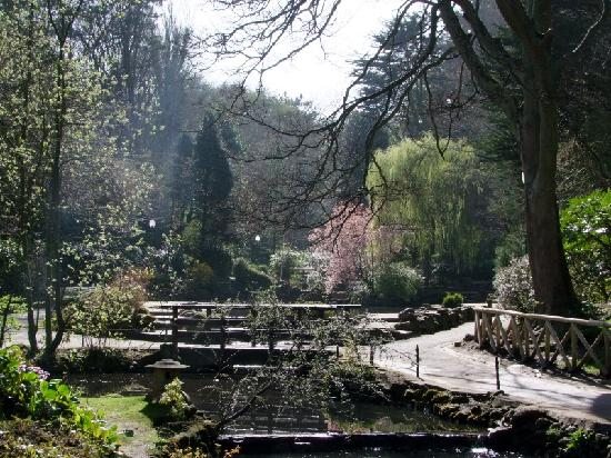 Miricia: Peasholm Park, 15mins away