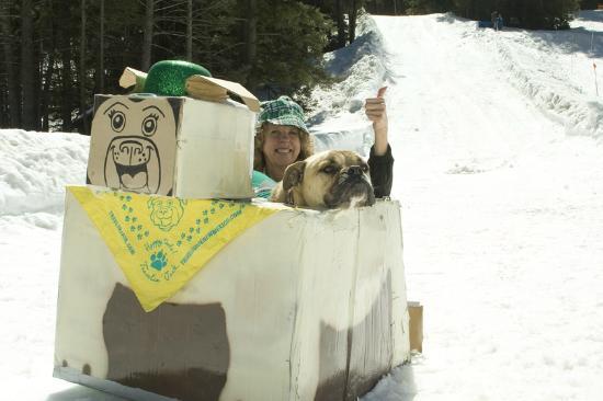 Sipapu Ski Area: We made it!  Whoo-Doggies!