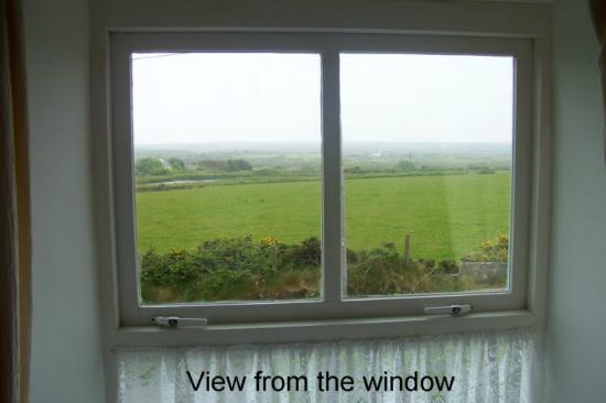 Tremynydd Fach Farm: View from room