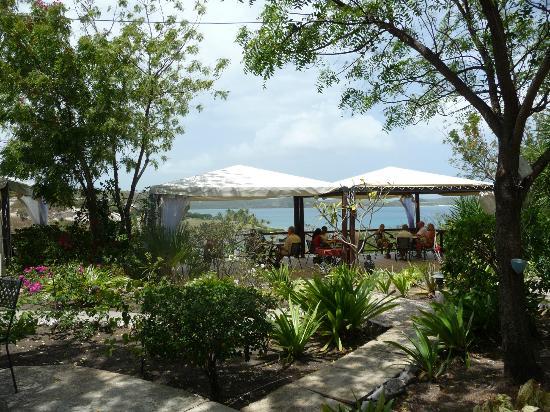 Harmony Hall Italian Restaurant : Dining paradise