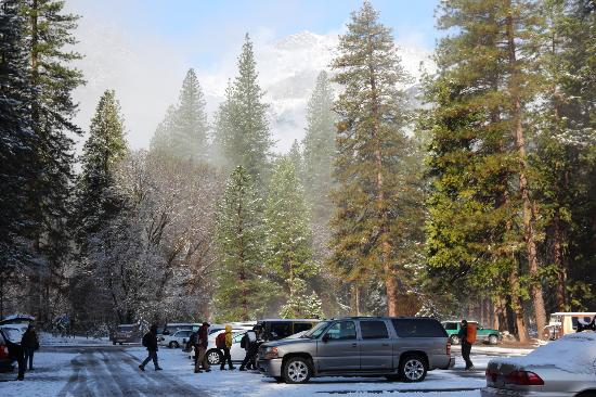 Half Dome Village: View from parking lot