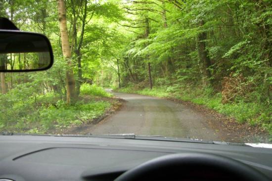 Lodge Farm: Road to B & B