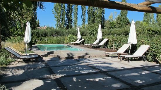 Finca Adalgisa Wine Hotel, Vineyard & Winery: Pool and deck