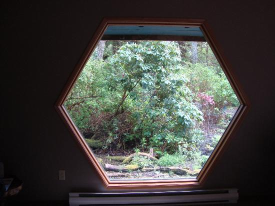Solwood Healing Arts Retreat & Spa: Window in living room