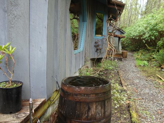 Solwood Healing Arts Retreat & Spa: The side of the main house