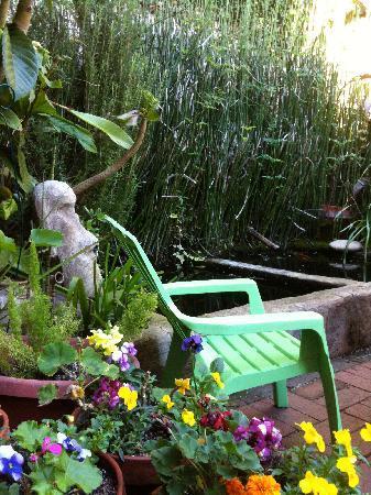 Linnaea's Cafe: the koi pond