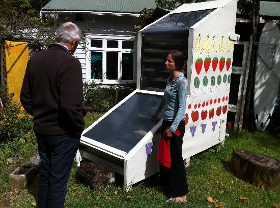 Fat Cat Eco Backpackers : Explaining solar drying process