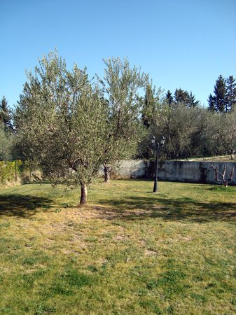 Residence Bartolini Ai Campi da Golf: giardino retro casa