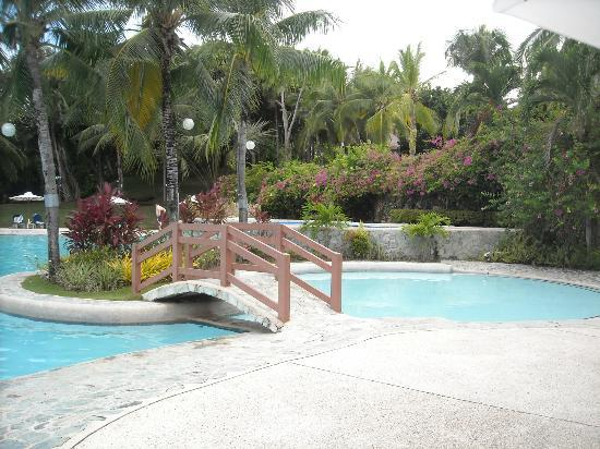 Alegre Beach Resort: pool