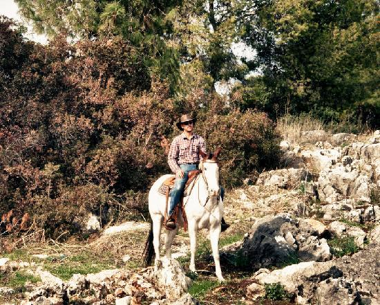 Vered Hagalil Holiday Village Hotel: you realy want him to take on a horse trip