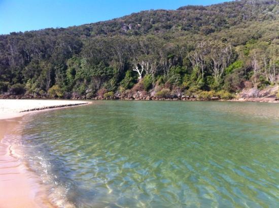 Hat Head, Australia: The creek next door to your tent