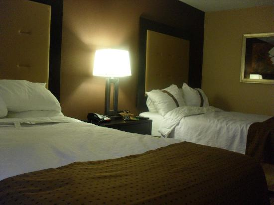 Holiday Inn Hotel & Suites Parsippany Fairfield: Our room
