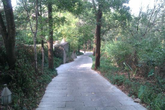 Club Mahindra Madikeri, Coorg: Joggers path