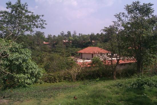 Club Mahindra Madikeri, Coorg: View from the resort