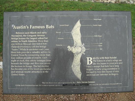 Lady Bird Lake Hike-and-Bike Trail : Sign at the Bat Bridge (Congress Ave Bridge)